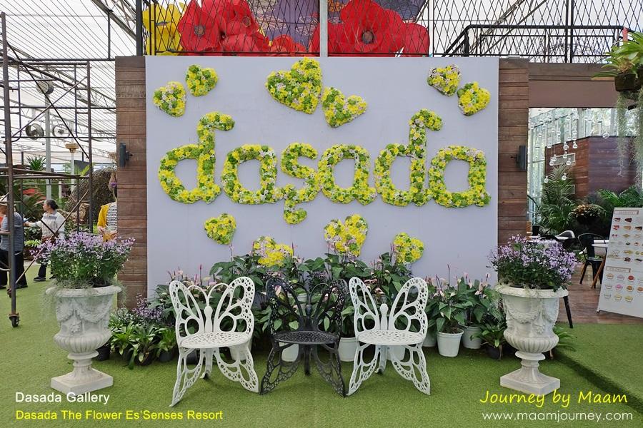 Dasada Gallery_3
