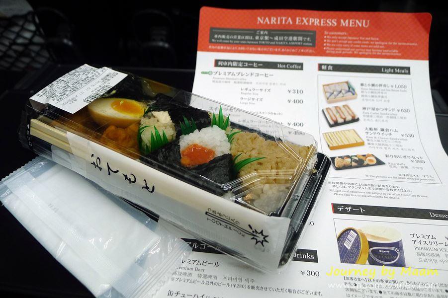 Narita Express_9