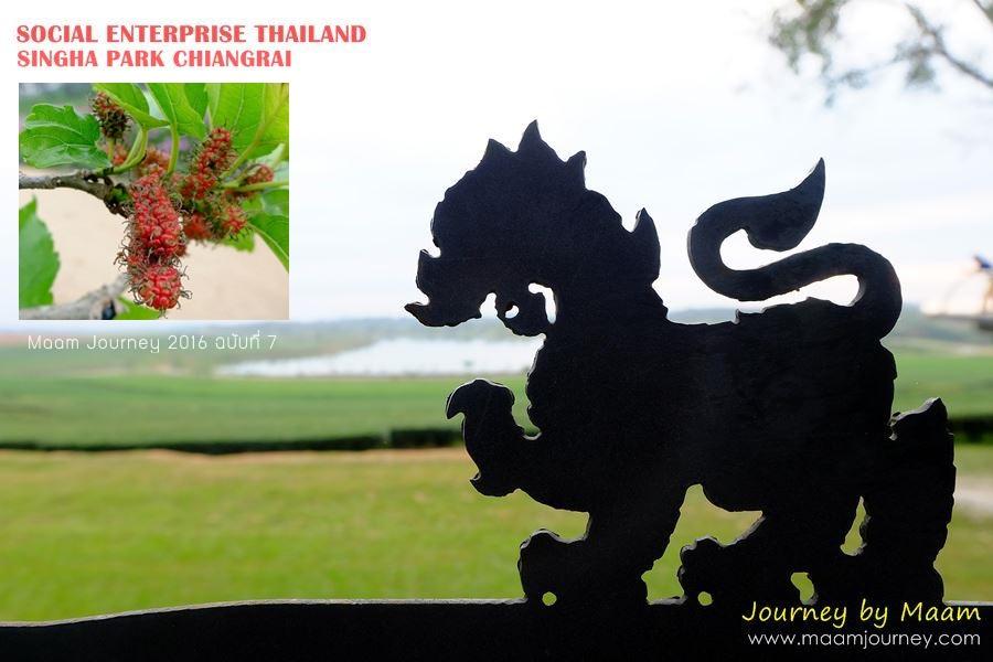 Social Enterprise Thailand_Singha Park