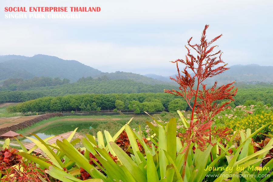 Social Enterprise Thailand_Singha Park_11
