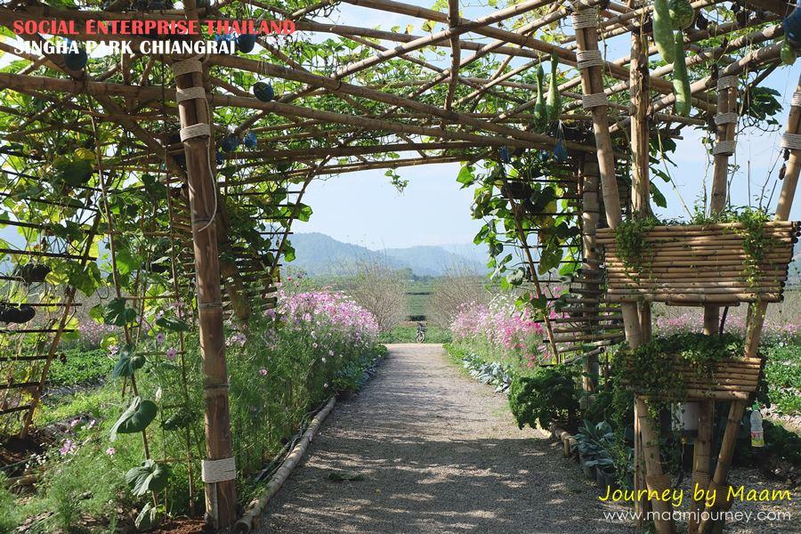 Social Enterprise Thailand_Singha Park_7