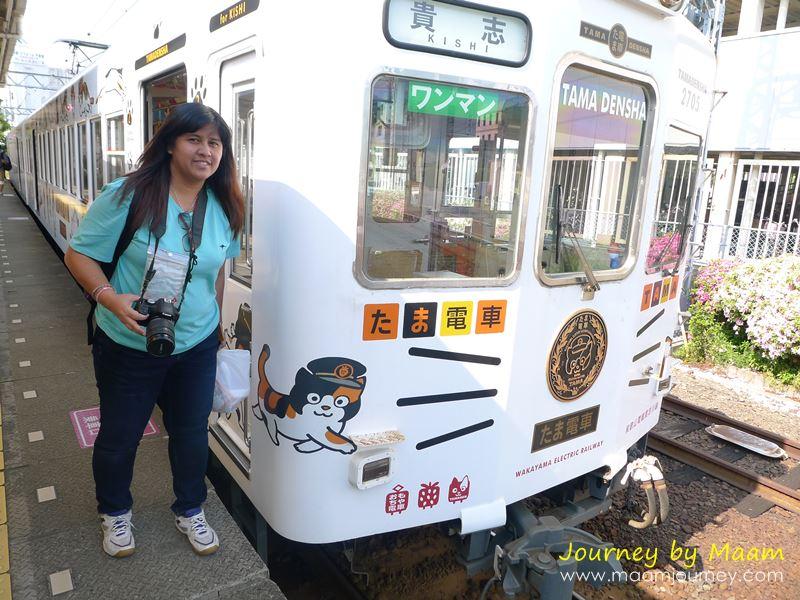 Tama Train