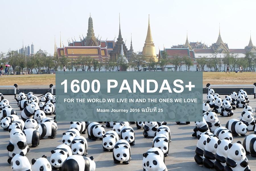 1600pandasplus_thailand