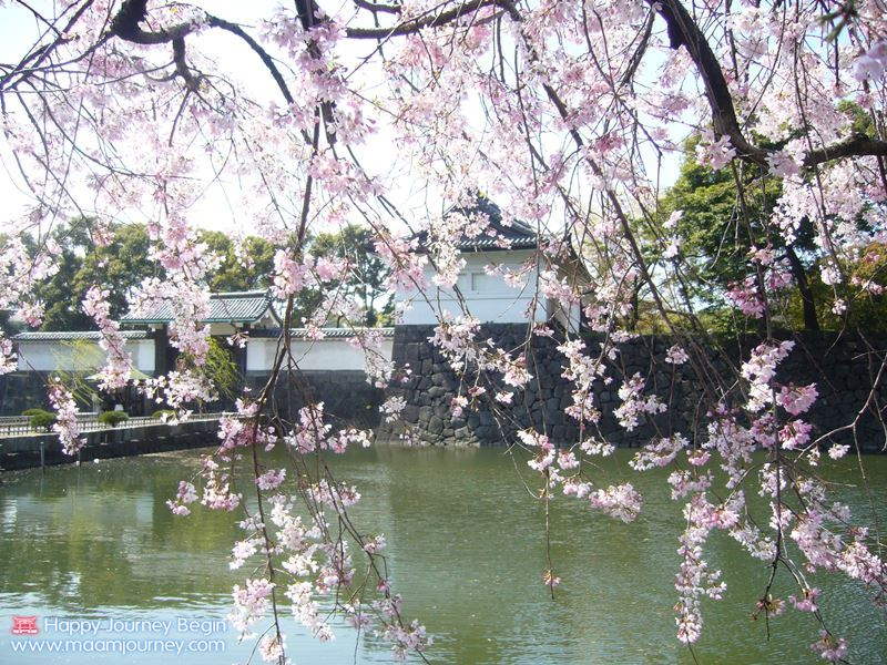 Sakura_Imperial_Palace