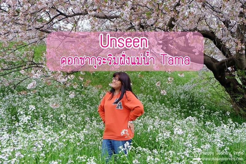 Sakura_Tamagawa