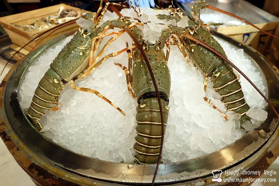 Copper Buffer_Lobster_1