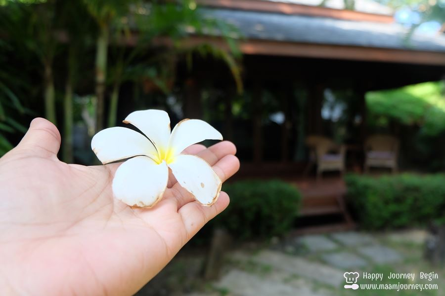 Onusa Retreat_One bedroom garden villa_1