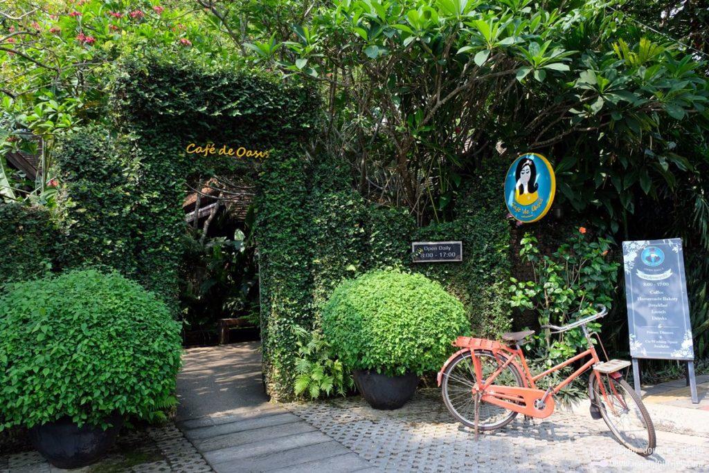 Cafe De Oasis Chiang Mai_1