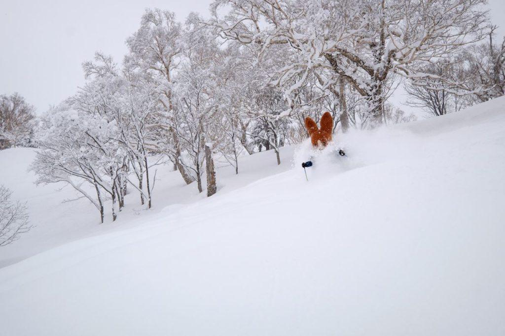 3-Ski shot 4