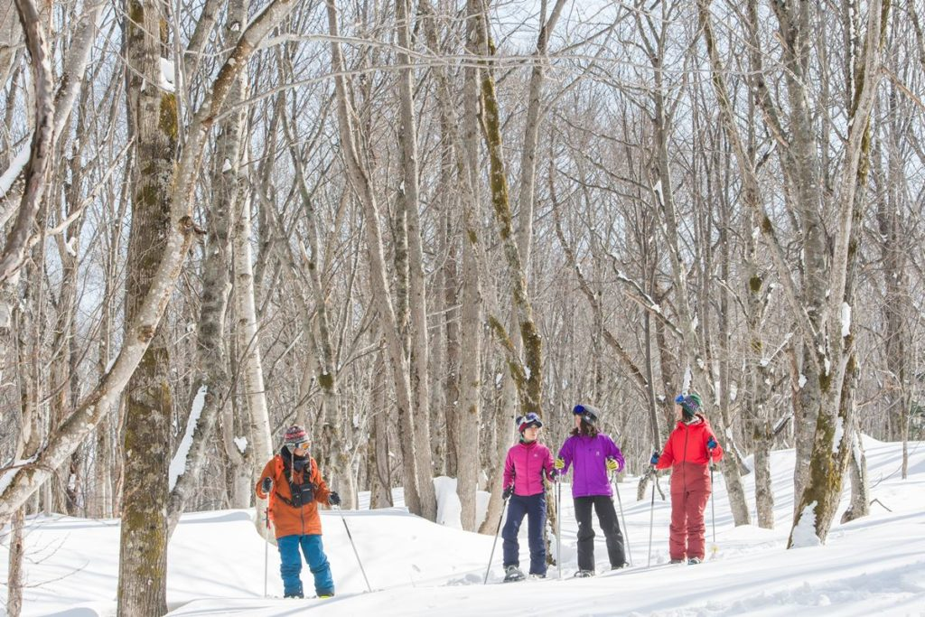 3-Snow Shoe Tour