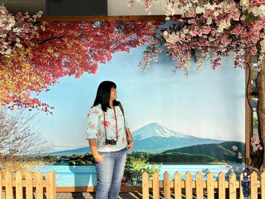 มุมภูเขาไฟฟูจิ