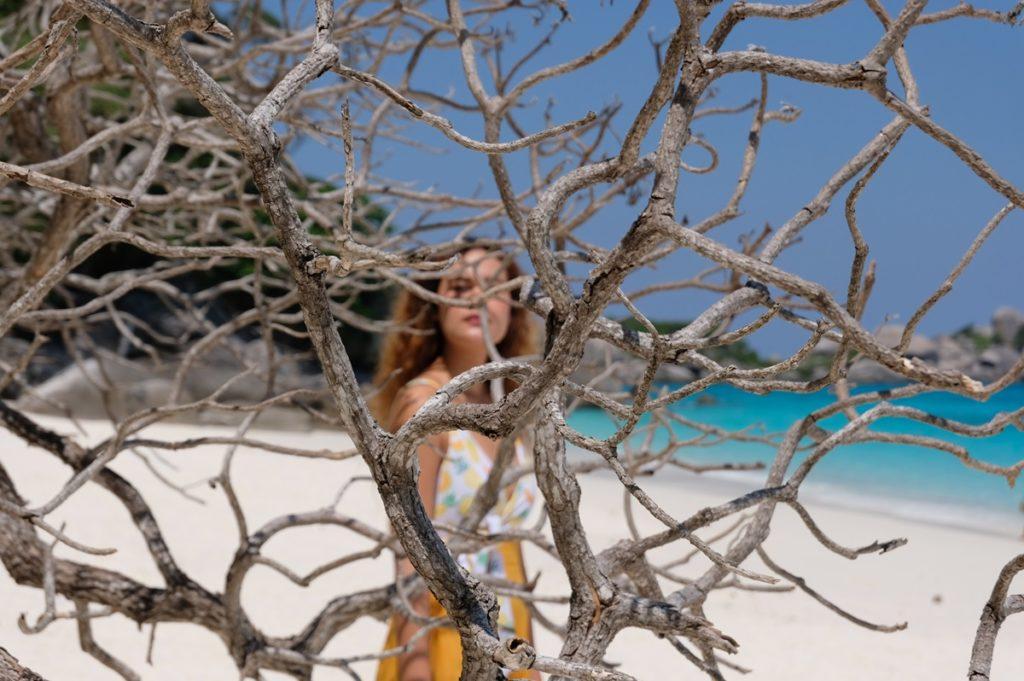 แอบถ่ายผ่านต้นไม้แห้ง ยังกะปะการังเลย