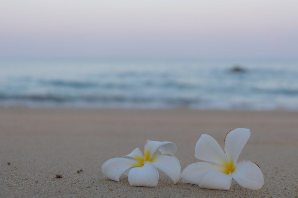 บรรยากาศยามเช้าริมทะเล