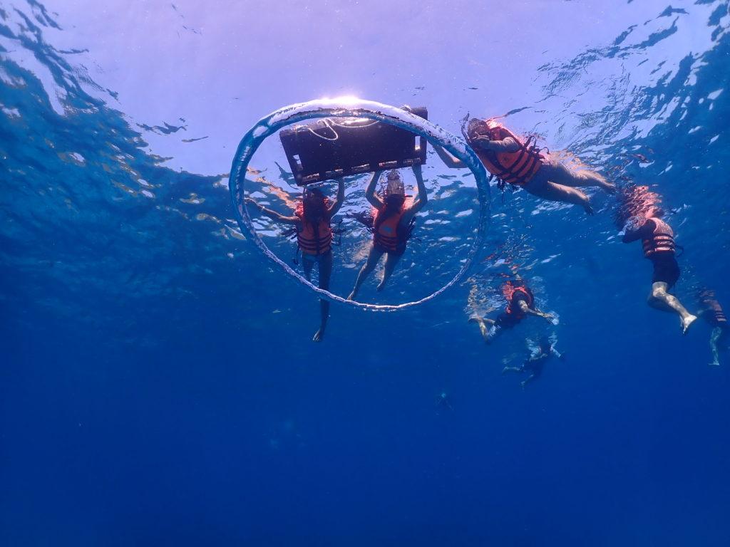 เกาะแท๊กซี่ไปชมปลา ปะการังกันค่ะ